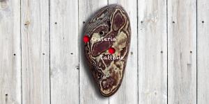 ein Stück Kiefernrinde in Korsikaform