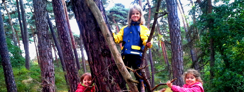 kletternde Kinder im Wald