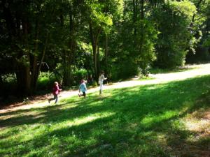 Kinder laufen auf einer Waldlichtung