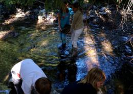 Kinder sammeln Steine im Bach