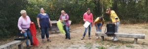 Angebote - Fortbildungstage für Kita-Teams